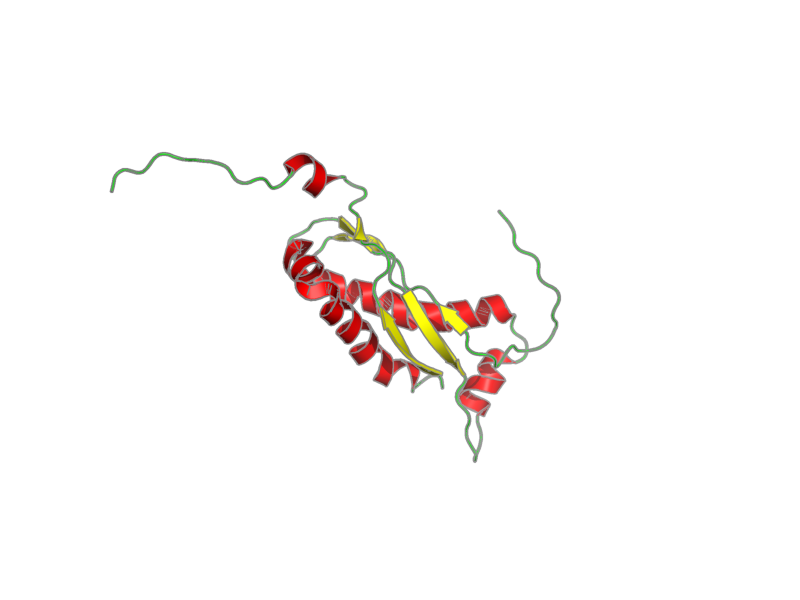 Ribbon image for 1win