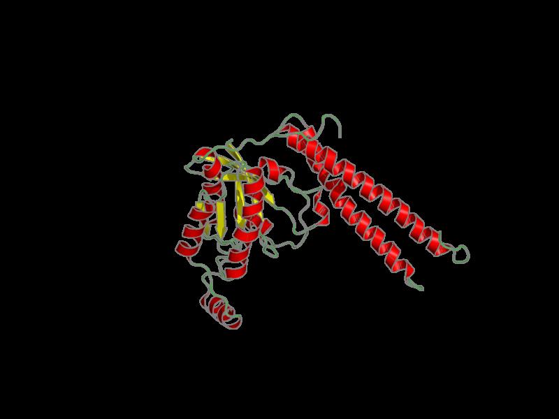 Ribbon image for 2rmk