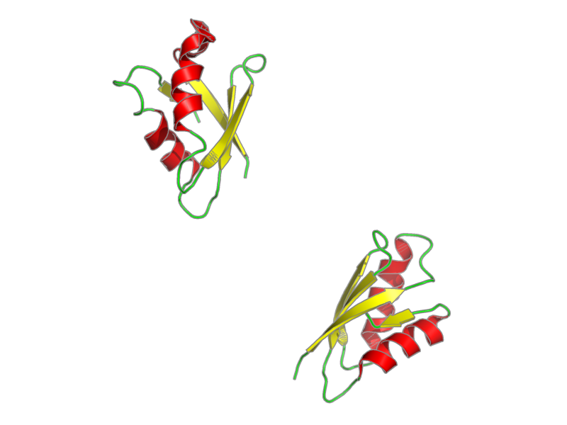Ribbon image for 2rop