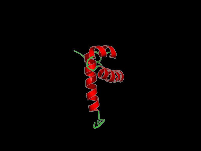 Ribbon image for 2din