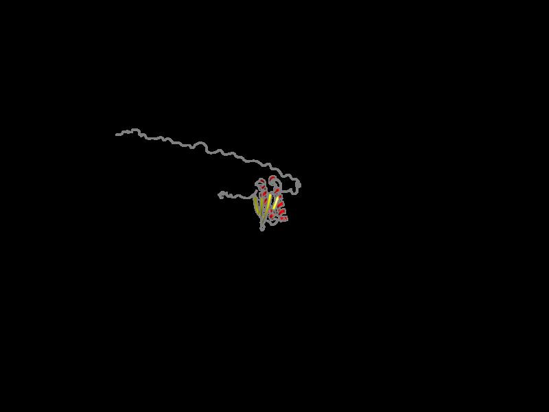 Ribbon image for 2rrl