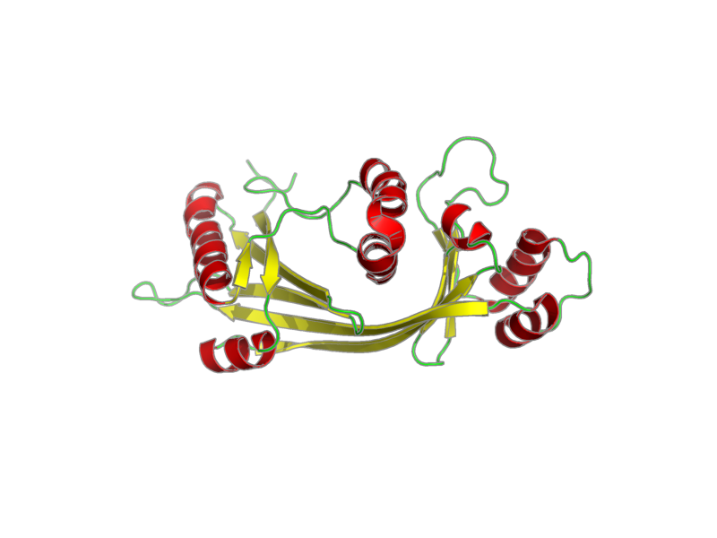 Ribbon image for 2jmu