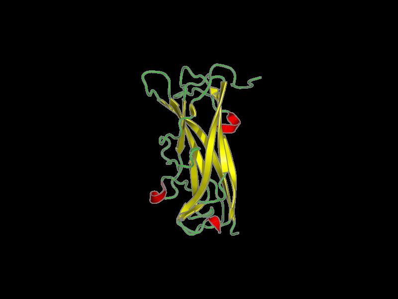Ribbon image for 2jty