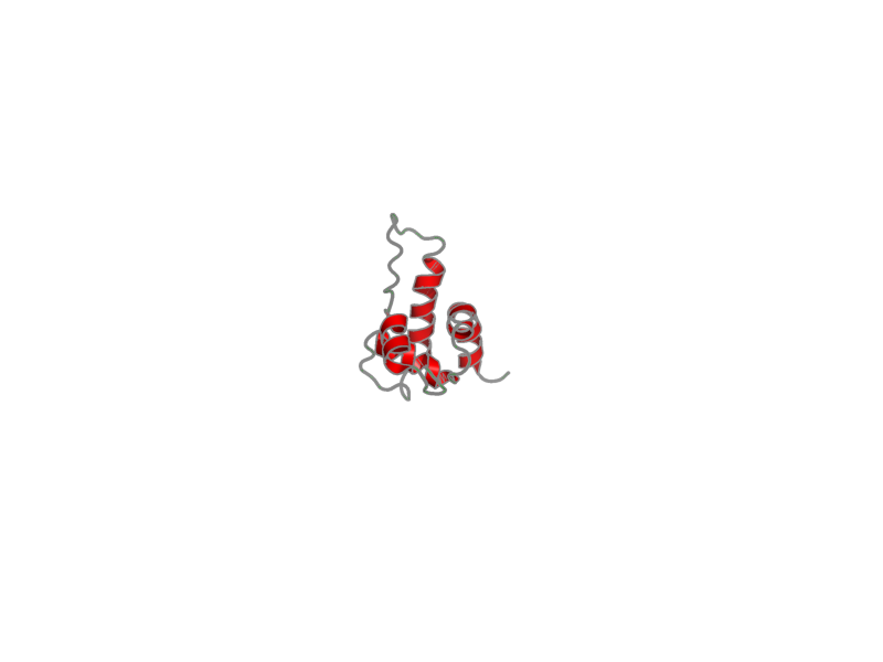 Ribbon image for 2ko6