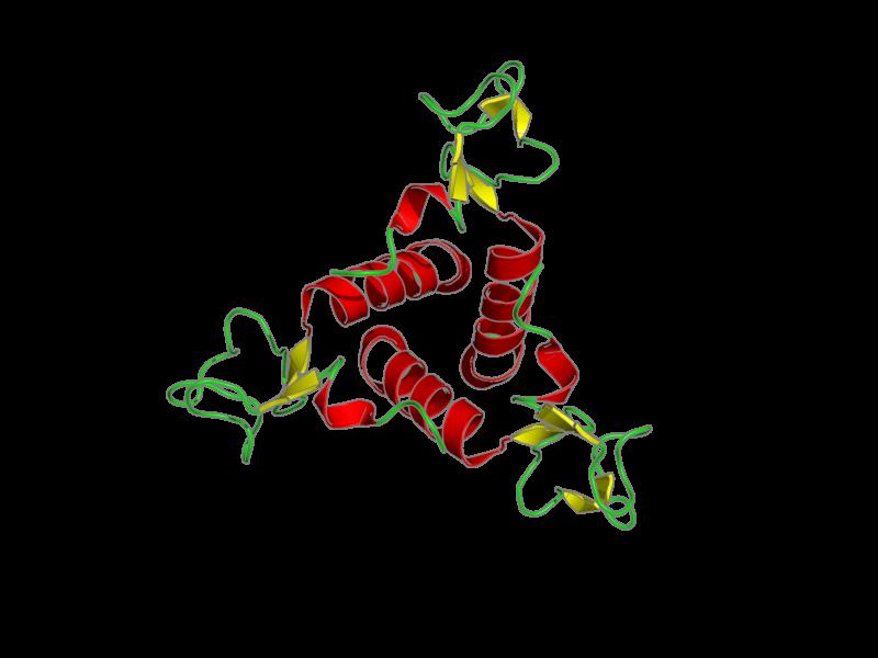 Ribbon image for 2ko8