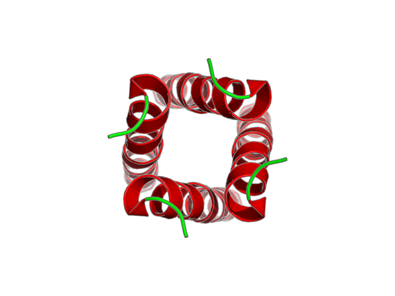 Ribbon image for 2kqt