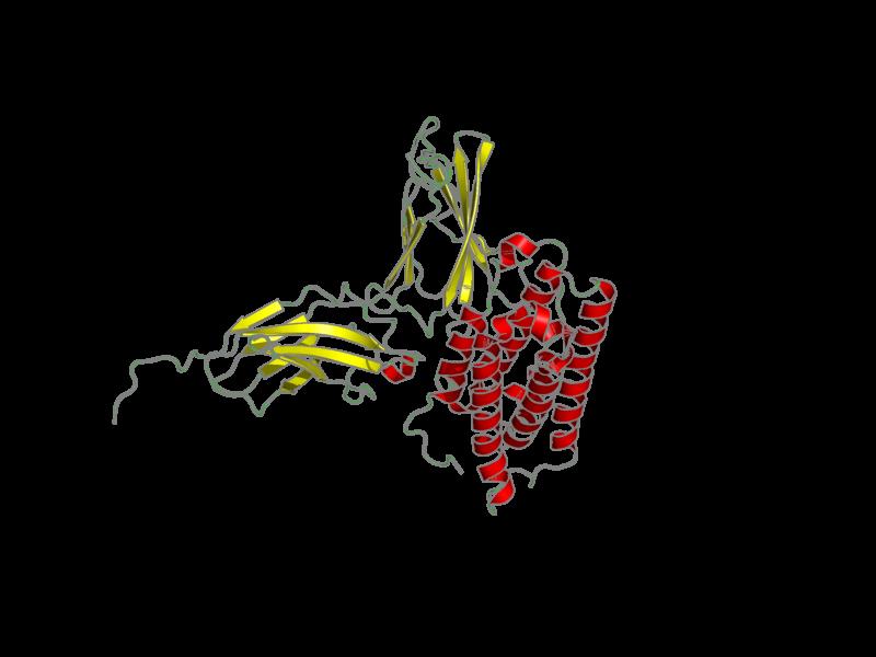 Ribbon image for 2lag