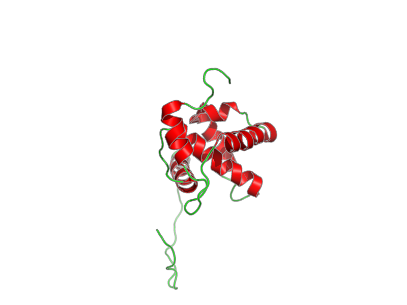 Ribbon image for 2k4i