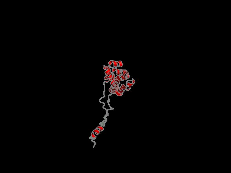 Ribbon image for 2l5v