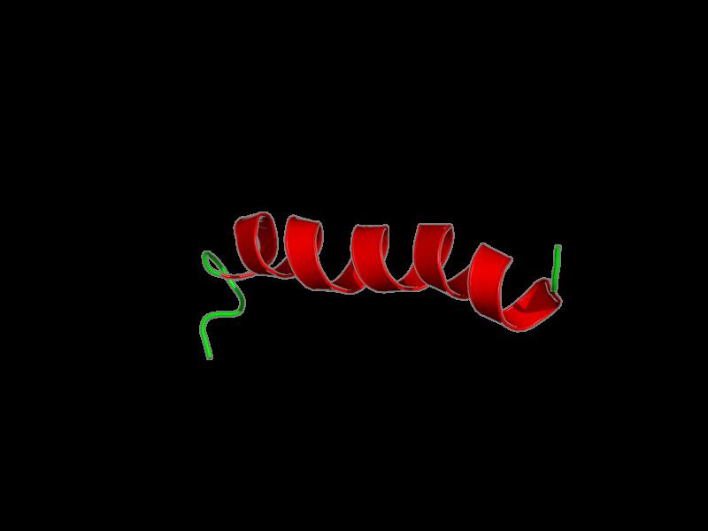 Ribbon image for 2lcm