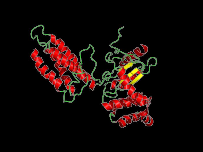 Ribbon image for 2leg