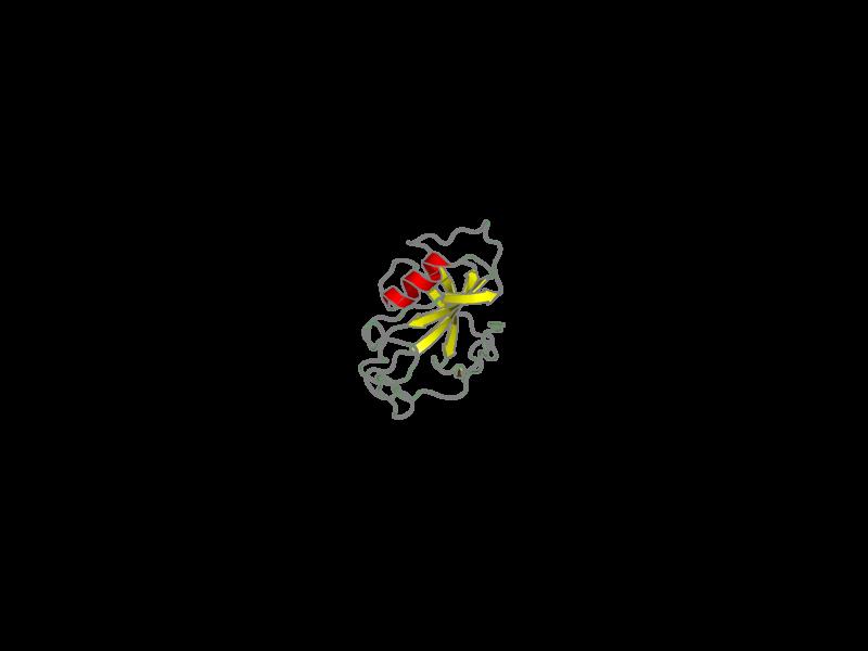 Ribbon image for 2lgo