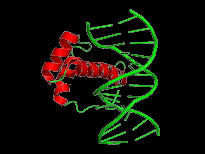 Ribbon image for 2lkx
