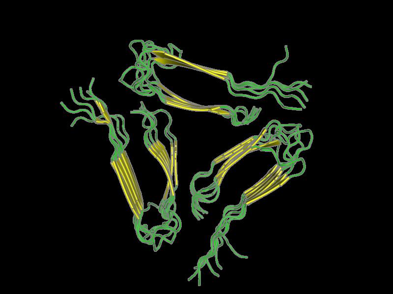Ribbon image for 2lmp