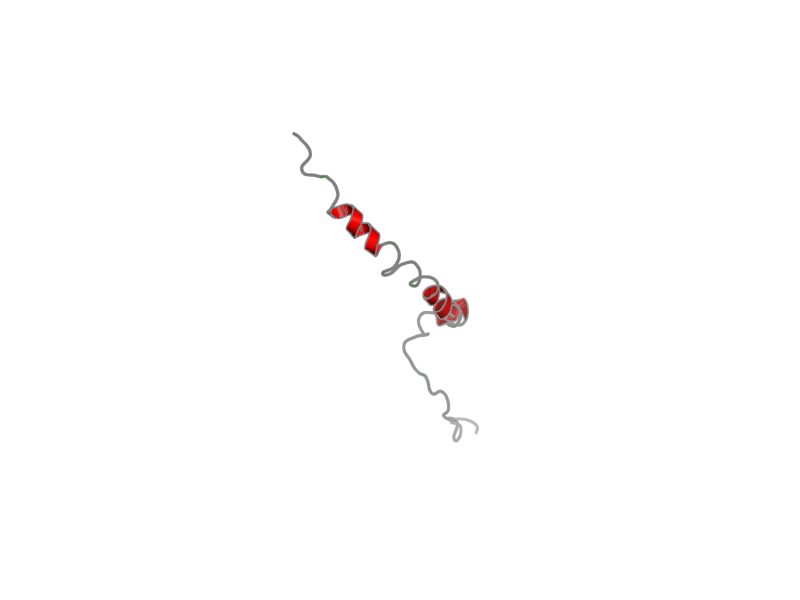 Ribbon image for 2lot