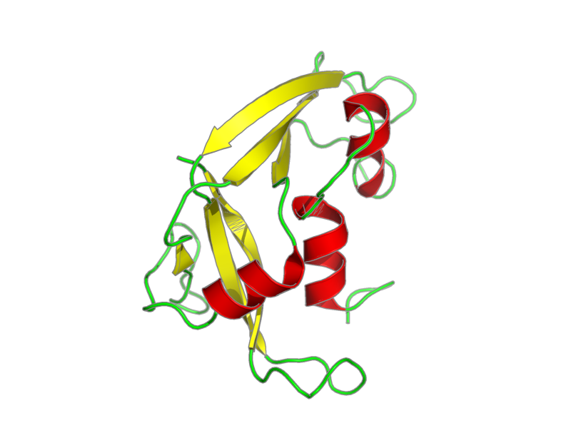 Ribbon image for 2lvz