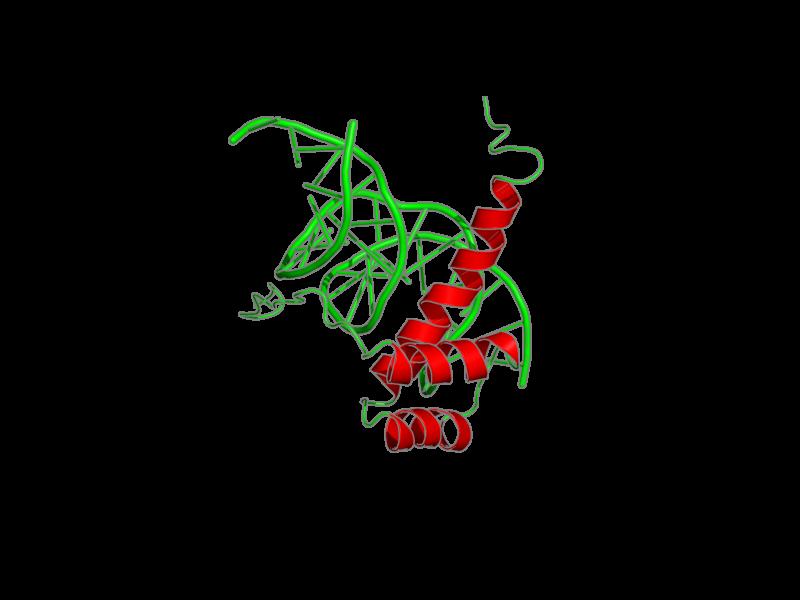 Ribbon image for 1nk2
