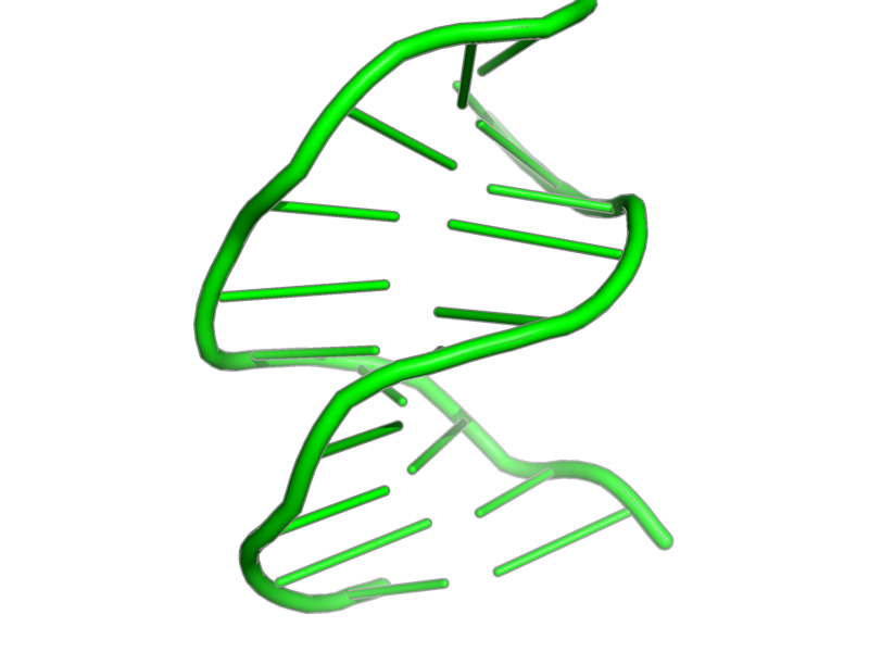 Ribbon image for 1qkg