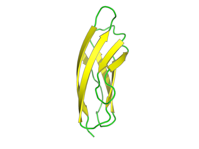 Ribbon image for 1b4r
