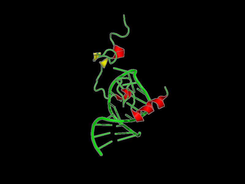 Ribbon image for 1f6u