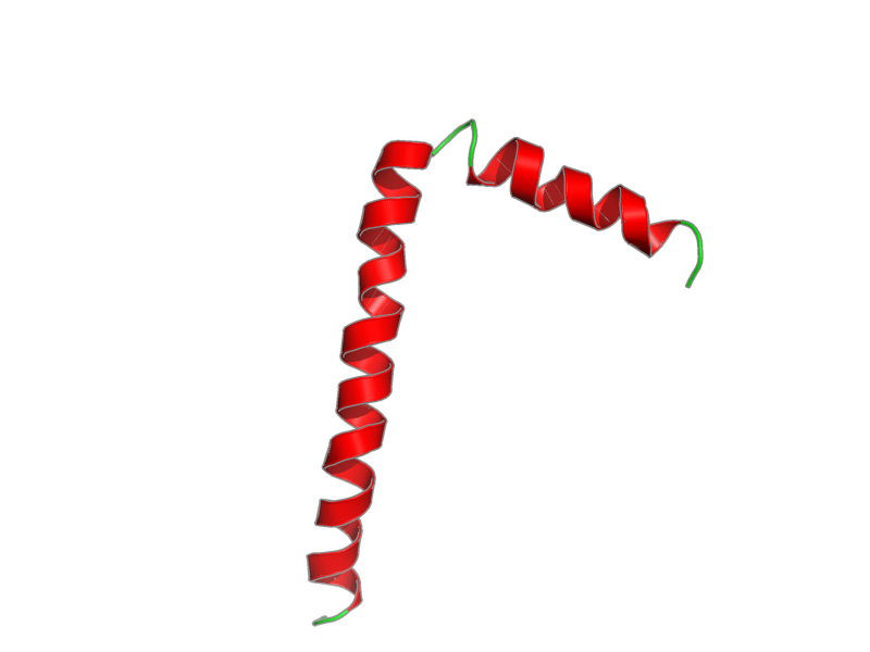 Ribbon image for 1fjp