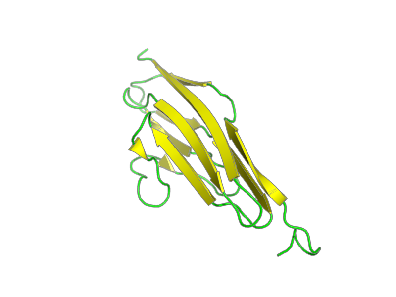 Ribbon image for 1ie5