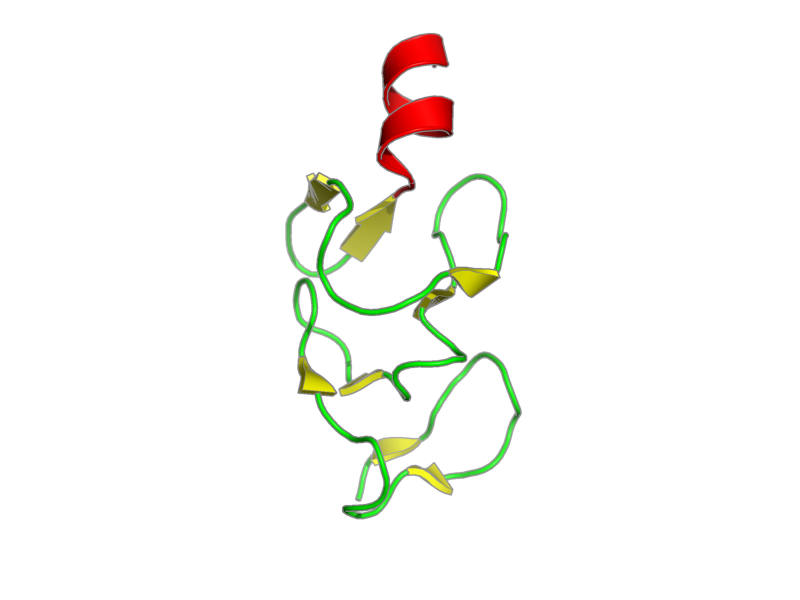Ribbon image for 1ibi