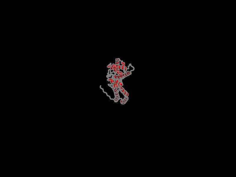 Ribbon image for 1l6n