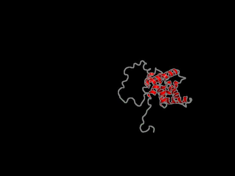 Ribbon image for 2bid