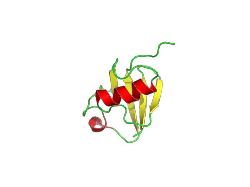 Ribbon image for 1iyf