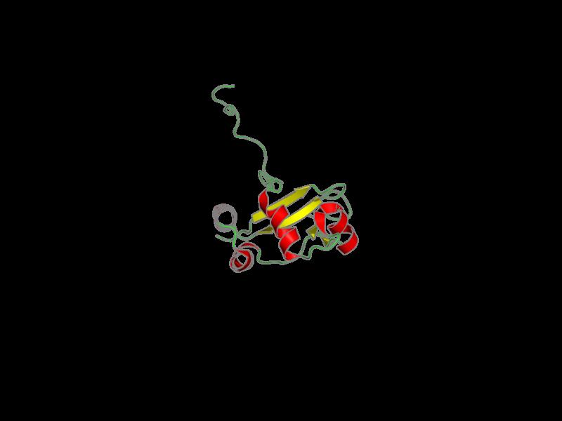 Ribbon image for 1nyn