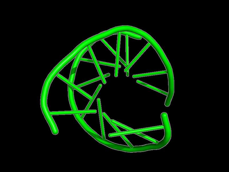 Ribbon image for 1nts