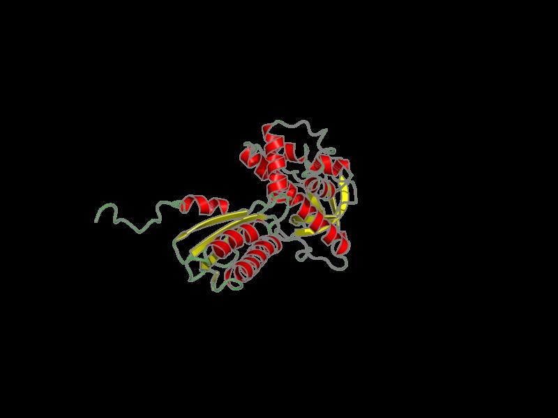 Ribbon image for 1q8k