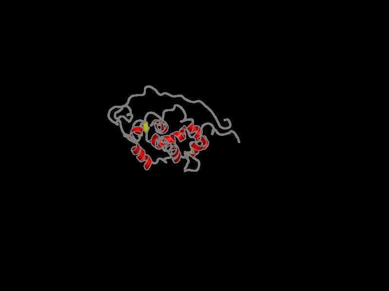 Ribbon image for 1s6i