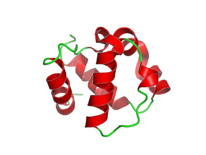 Ribbon image for 1sxd
