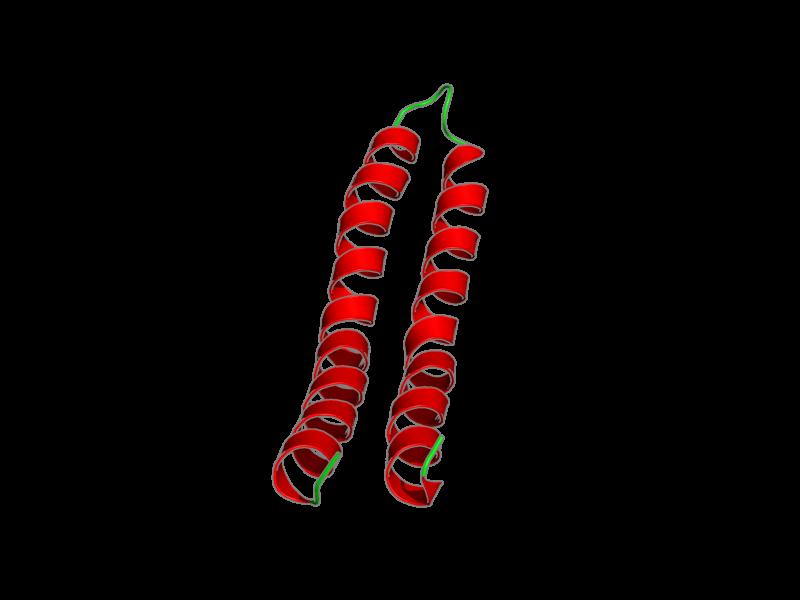 Ribbon image for 1wu0