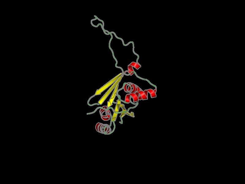 Ribbon image for 2arf