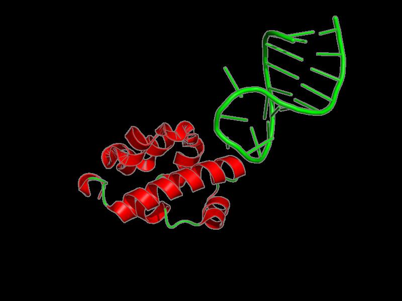 Ribbon image for 2b6g