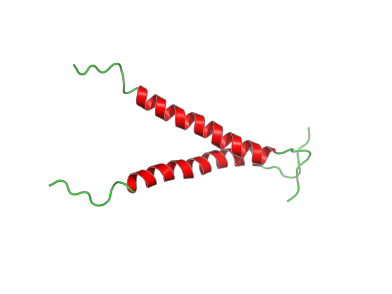 Ribbon image for 2lcx