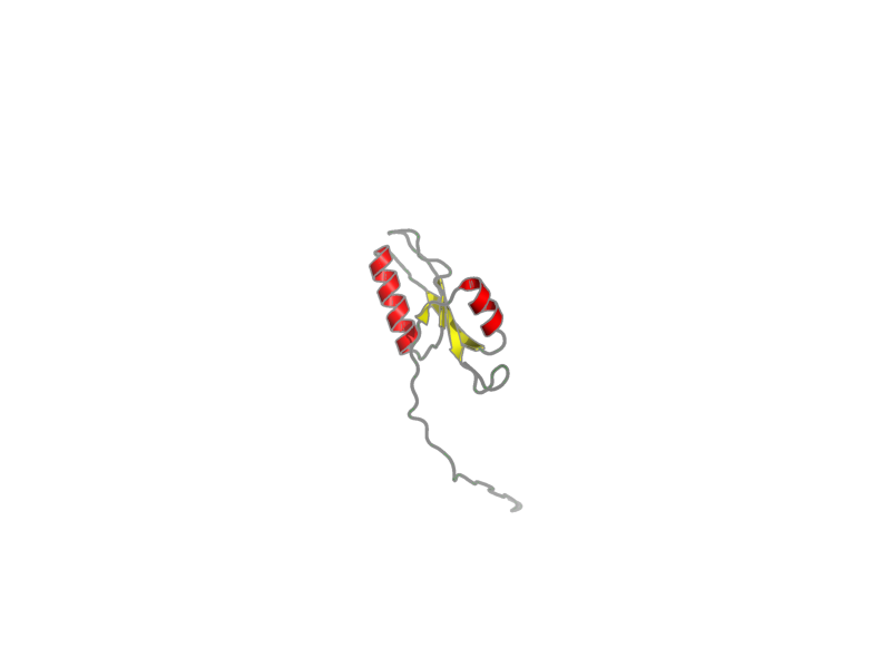 Ribbon image for 2noc