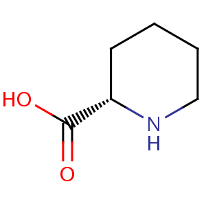 DL-Pipecolic acid image