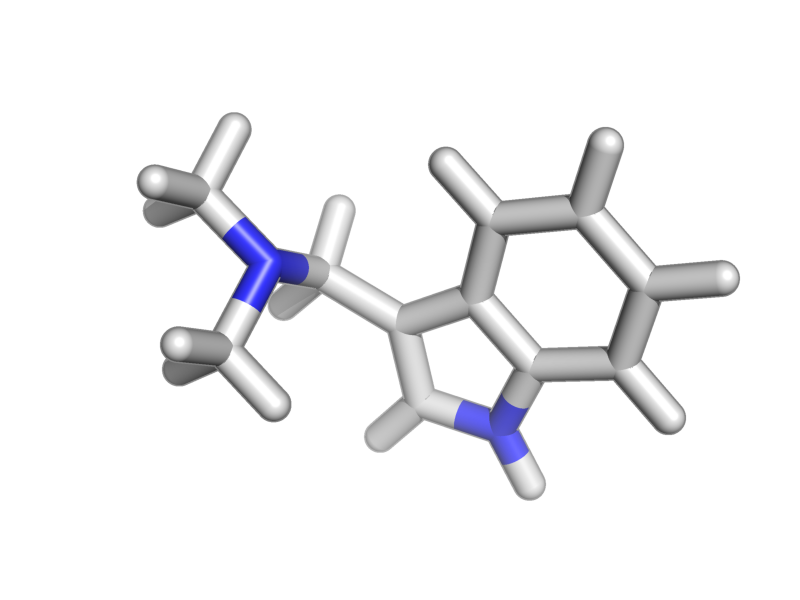 1-(1H-indol-3-yl)-N,N-dimethylmethanamine image